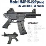 Is this Cool or What – Smith and Wesson M&P15-22P?